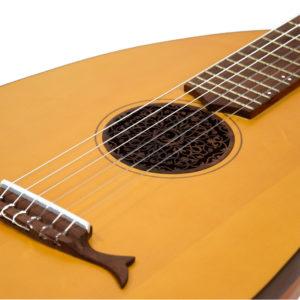 Лютневидная гитара